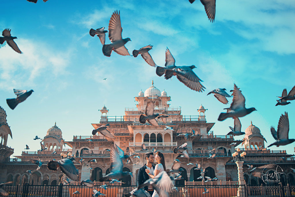 Couple Pre wedding Shoot with pigeons at the Albert Hall Museum Jaipur